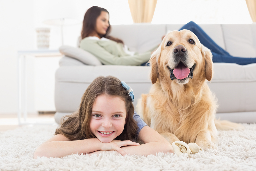 New Eastside Dog Friendly Condos For Sale